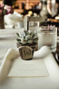 wedding favor succulents 1