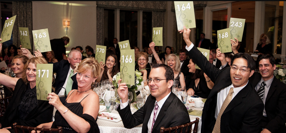 Fundraising Gala Ideas For A Successful Event - Auction
