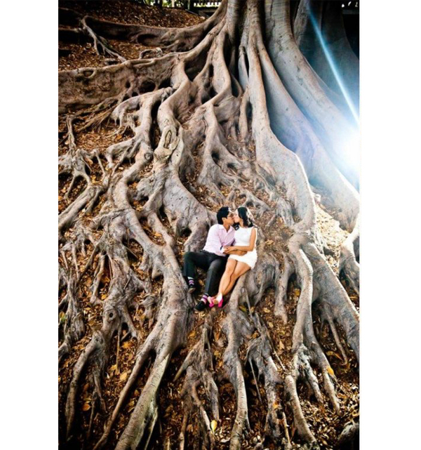 Engagement Photo Shoot - Couple In Tree Roots At Balboa Park
